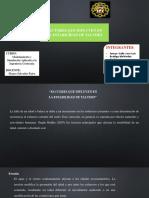 Modelamiento Factores Que Influyen en La Estabilidad de Taludes