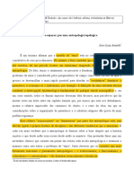 293880172 Etnias e Espacos Por Uma Antropologia Topologica (1)