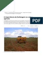 355Fosfatagem Solo Agricola)
