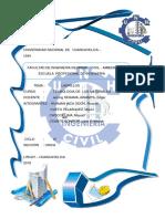 Universidad Nacional de Huancavelica 10-1
