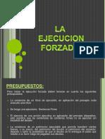 evy-la-ejecucion-forzada1-150704212918-lva1-app6892(1)