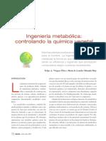 Panorama Ingenieria metabolica