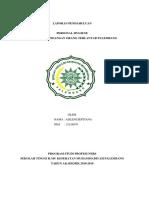 Leaflet Diare2