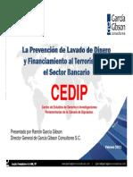 Ponencia en el CEDIP del Dr Garcia Gibson