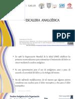 Elsevier Guia Supervivencia 2