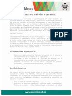 Estrucutracion Plan Comercial