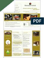Cartilla Equinos.pdf