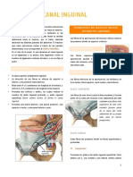 Lectura Canal Inguinal
