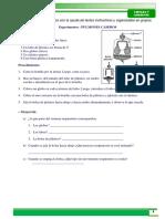 Pratica 5 Primaria ( Biologia9