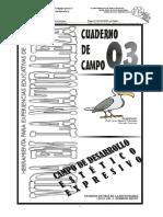 CC03_Estetico Expresivas.pdf