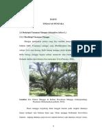 10620061_Bab_2.pdf