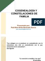 -Psicogenealogia-y-Constelaciones-de-Familia.pdf