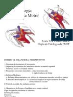 Sistema Nervoso Motor.pdf