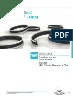 DBM.pdf