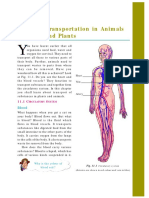 0654 IGCSE - Transportation in plants and animals.pdf