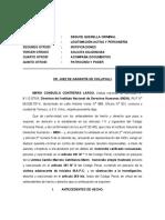 Querella INDH Homicidio Camilo Catrillanca