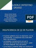 Pulmon e Intestino Grueso 1411 Equipo Uno 1
