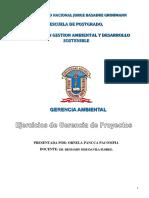EJERCICIOS DE GERENCIA AMBIENTAL resuelto.docx