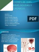 Infecciones Agudas y Cronicas Equipo 1 1411