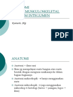 ANATOMIMUSKULOSKELETAL.ppt