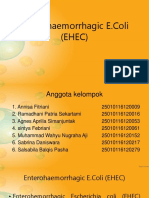 Enterohaemorrhagic E