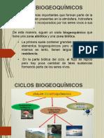 Ciclos Biogeoquímicos (C-4).pdf