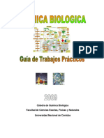 Guia Quimica Biologica-2009.pdf
