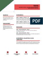 Modelo Curriculum 5