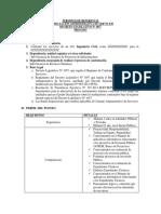 ALVARO TDR.docx