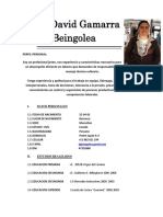 Jose-Gamarra-Beingolea-CV.docx