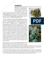 Cannabis (Psicotrópico) (1)