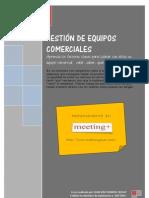 GESTIÓN DE EQUIPOS COMERCIALES