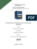 Informe Patologías en Bca