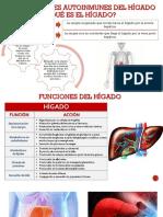 Enfermedades Del Higado y Cardiovasculares