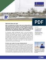 Factsheet_Sauergas_en.pdf