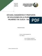 Diagnóstico Playa Valencia