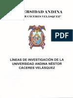 LÍNEAS-DE-INVESTIGACIÓN-1.pdf