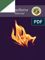 Agnihotra-Tutorial-ESP.pdf