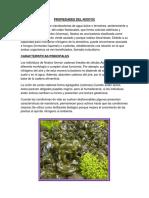 348456814-Propiedades-Del-Nostoc.docx