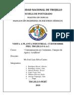 Cuestionario de Grupo Curtiembre (Final) (1)