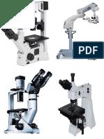 Microscopio Robert hooke