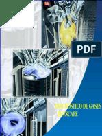 diagnostico_gases_escape.pdf