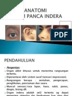 KKPMT_3_Panca_1sd5.pdf