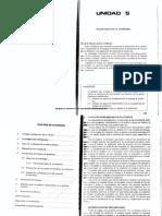 TEXTO UNA- AUDITORIA I- 691- UNIDADES 5 y 6.pdf