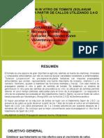EXPO- FINAL -PROGRAGACION DE TOMATE.pptx