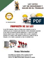 EXPOSICION LEY 29783.pptx