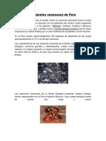 Serpientes Venenosas de Perú