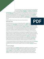 155376496-nanotecnologia-informe.docx