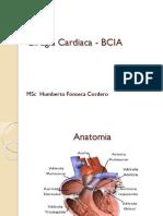 Cirugia Cardiaca - BCIA