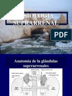 Clase_Suprarenal[1].pptx